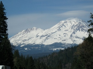 mt shasta again